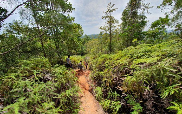 Hiking in Brunei