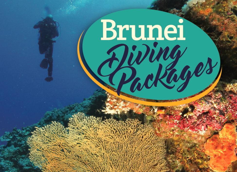 Diving in Brunei